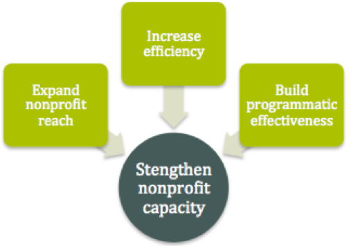 nonprofit capacity
